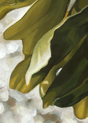 Seaweed (detail).
