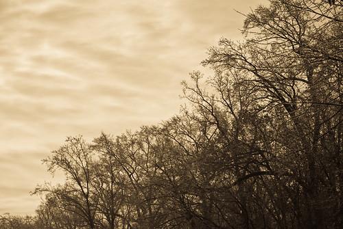 Sleeting sky