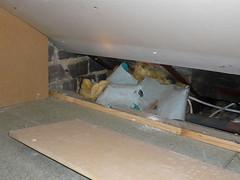 Loft damage by mice or squirrels