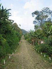 Straight Path