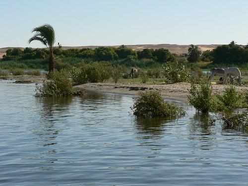 Egypt - Nile Felucca Trip, Aswan to Edfu