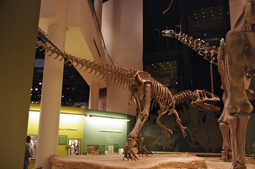 Museum of natural history, Norman