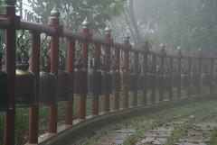 Thailand: Doi Tung