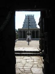 Peeping through the entrance door