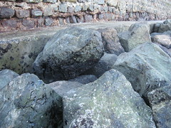 aqpark_rocks_112107