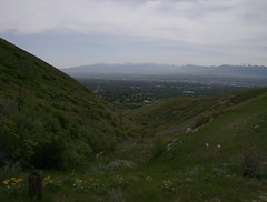 Looking into the Salt Lake Valley near Emigration Canyon