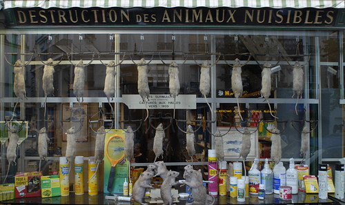 Image result for Destruction des Animaux Nuisibles