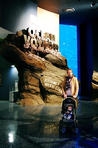 The Ocean Voyager exhibit.