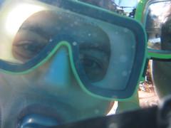 Snorkling off Maui
