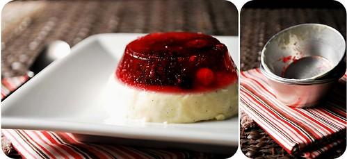 Vanilla Yogurt Pannacotta with Mixed Berries Jelly II