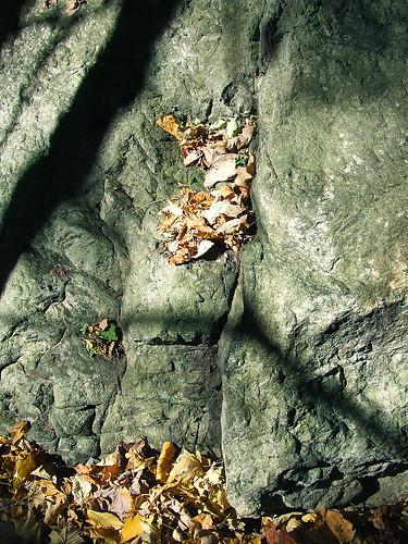 big rock 8