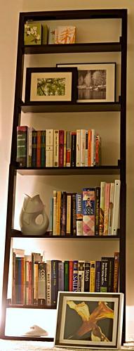 panoramic bookshelf.jpg