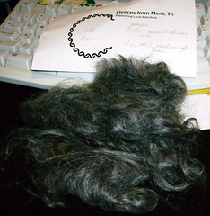 Mohair from Bubba the Goat - Merit TX