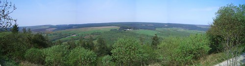 view from dalby forest