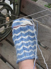 Salty Toes 3.3