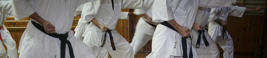 Fin de año Japonés Karate 4