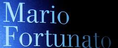 Mario Fortunato, Certi pomeriggi non passano mai; nottetempo 2009; progetto grafico: Studio Cerri Associati: cop. (part.) 2