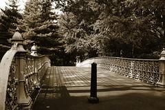 Central_Park_seppia