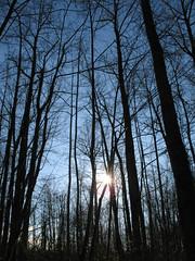 Bear Creek Park 040