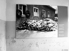 KZ-Gedenkstaette Buchenwald 13