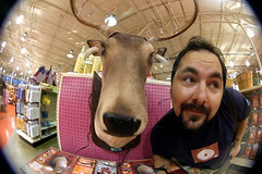 The end is near: Gone shopping for fake reindeer head