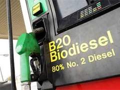 biocombustible biodiesel