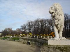 Jardin du Luxembourg (21)