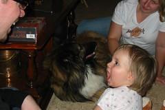 Puppies go Woof Woof!