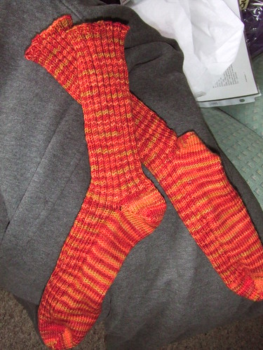 Decidedly Fall socks