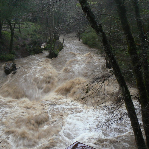 Boulder Creek, 1/25/2006, 4pm