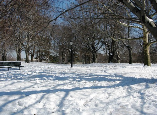 Snow, Shadows