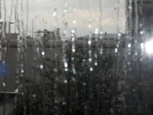 Pearly Raindrops