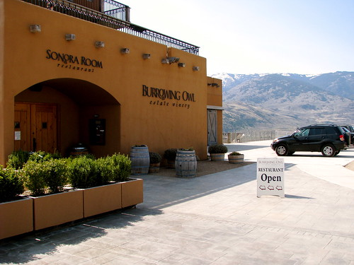 Burrowing Owl Winery