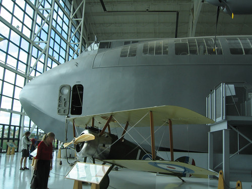 Day 07 - Spruce Goose Nose
