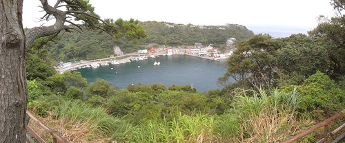 Habu harbor