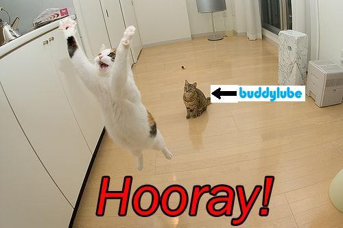 BuddyLube Departure