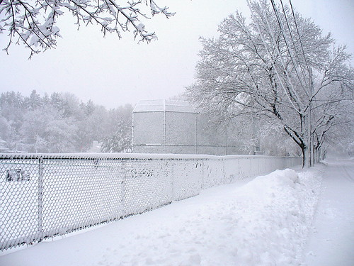 Snow-link fence