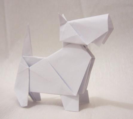 things an origami scottie dog won t do scottish terrier and dog news rh scottishterriernews com