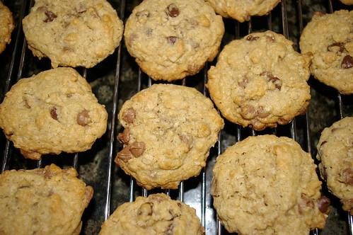 Long Lost Cookies