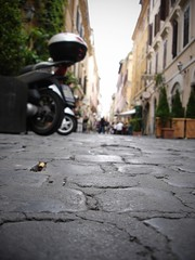 Cobblestones by pricklypearbloom