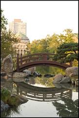 Bridge by Caryn Hughes