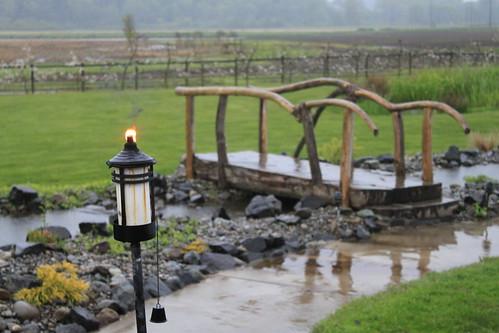 Ryn and Alex's Wedding - Reception - Torch and Bridge