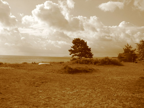 The view from the summer house in sepia, Skåne, Sweden