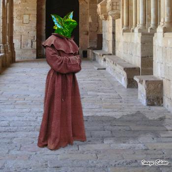 Brother Loki Gremlin