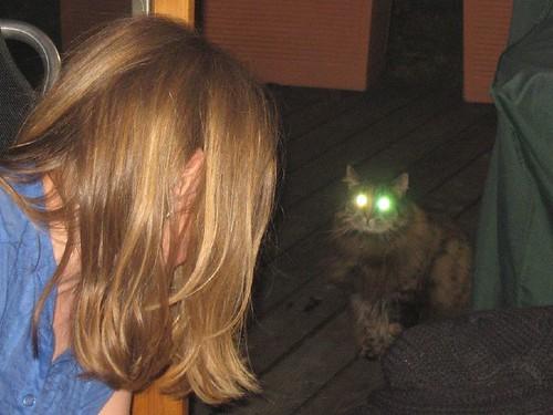 Ausserirdische Katze