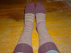Carnivale Du Printemps Socks - Complete