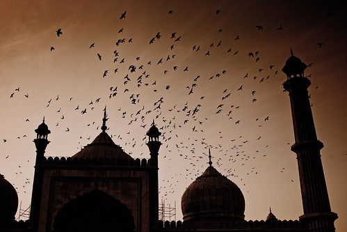 New Delhi, India, 2008