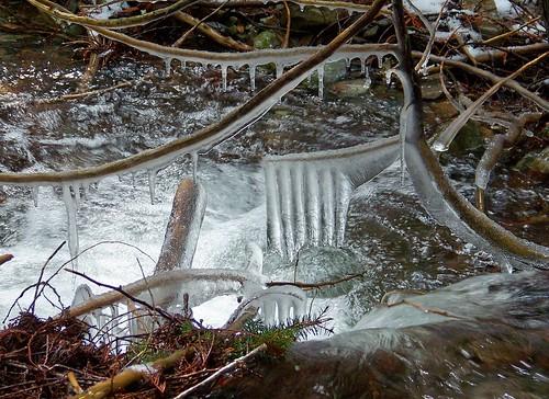 Ice on Spring Creek