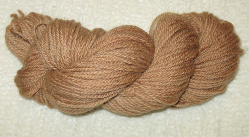 Yarn dyed with eucalyptus