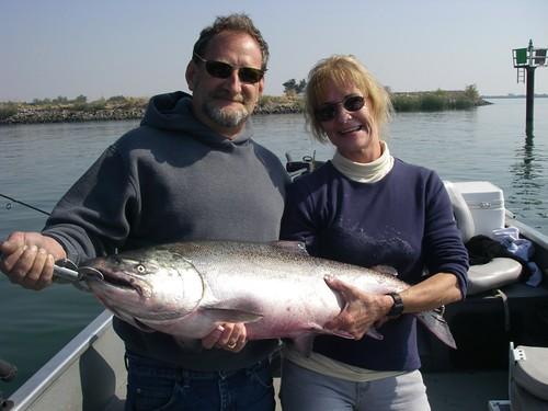 Crazy Salmon